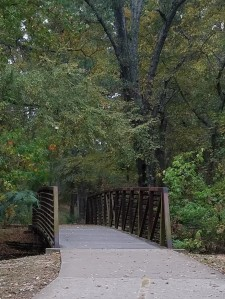 One of the bridges on the trail (2)